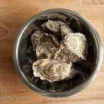 oysters-4
