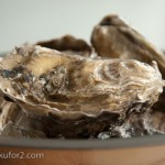 oysters-7