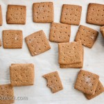 grahamcrackers19