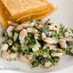 shrimpsalad18