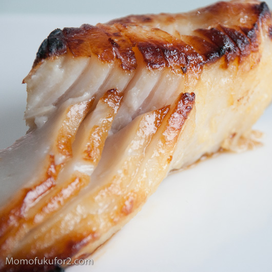 Miso Marinated Black Cod Recipe | Cooking Momofuku at home - Momofuku ...